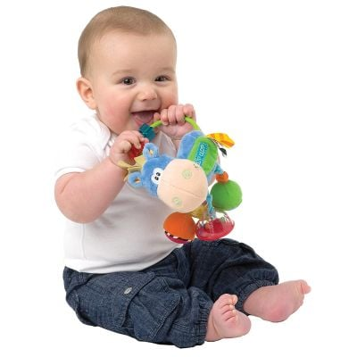 Playgro Clip Clop Activity Baby Rattle Gift Idea for Baby
