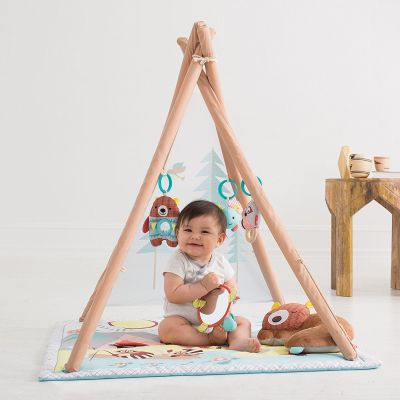 Skip Hop Baby Camping Cubs Activity Gym and Playmat